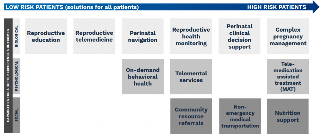 perinatal care framework
